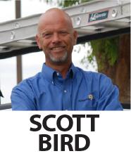 scott_bird