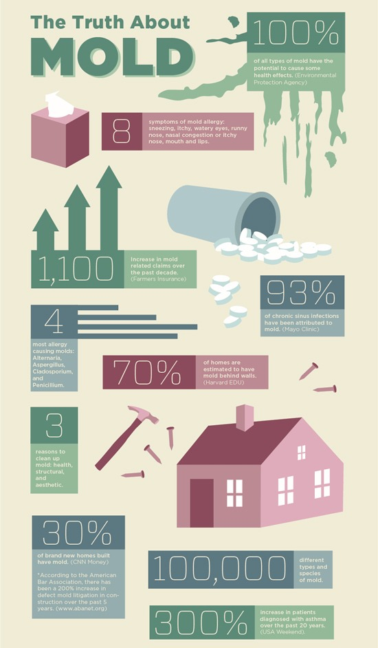 Home Mold Statistics & Facts Infographic